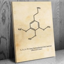 Mescaline Molecule Canvas Science Art Print